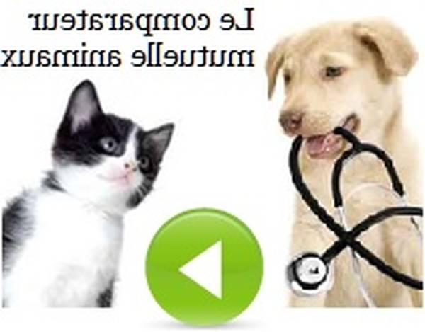 animal welfare assurance number lookup